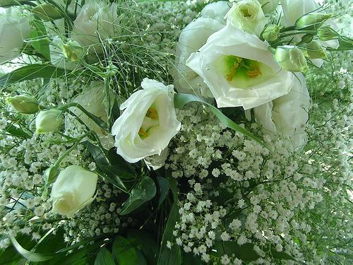 bouquet-mariee-vert-blanc