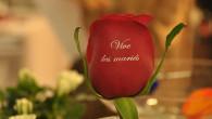 Qui dit mariage dit fleurs. En effet, celles-ci sont présentes sur les mariés et les invités (coiffure, le bouquet de la mariée, sur le veston, sur les chapeaux, etc…), en […]