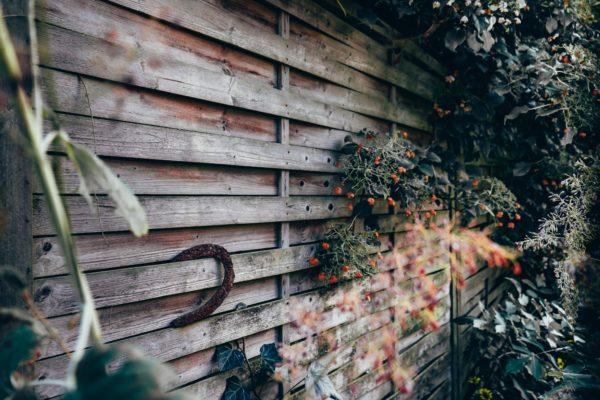 cloison en bois au jardin